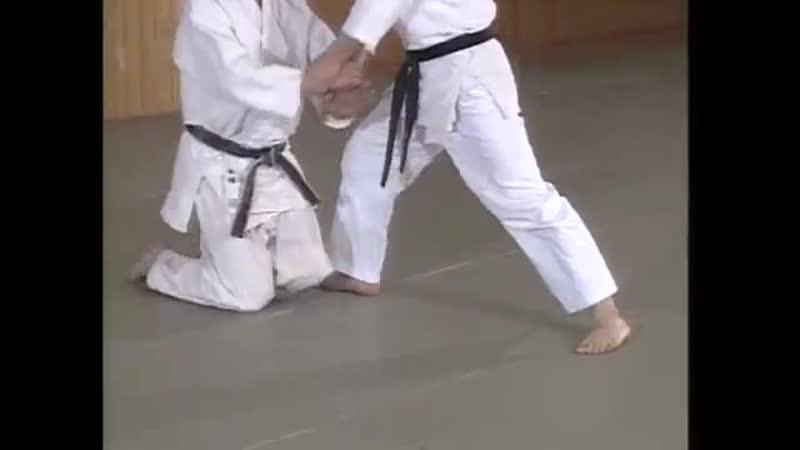 Hanmmi handachi ryote mochi shiho nage mp4