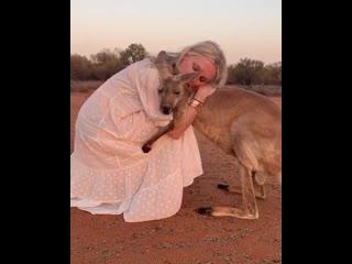 Кенгуру обнимает девушку в Австралии.