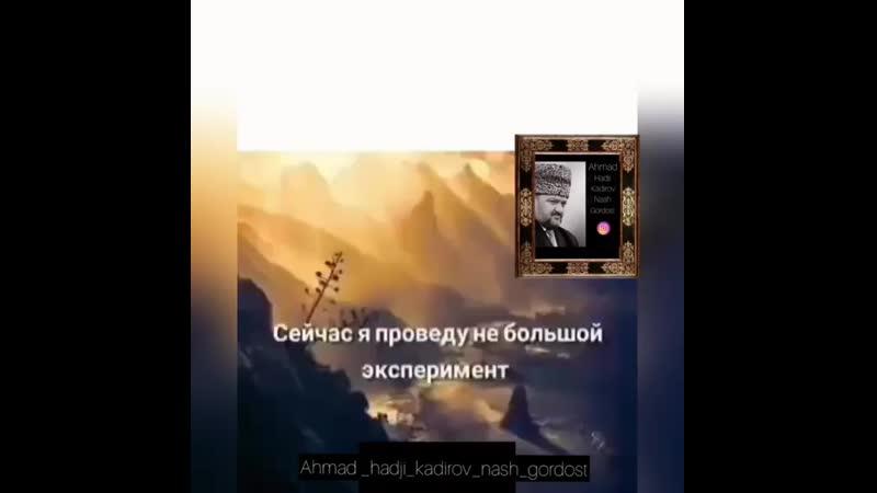 Ahmat_haji_nash_gordost_20191102_8.mp4