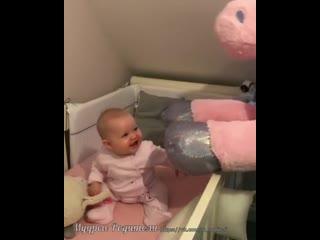 пони и малыш