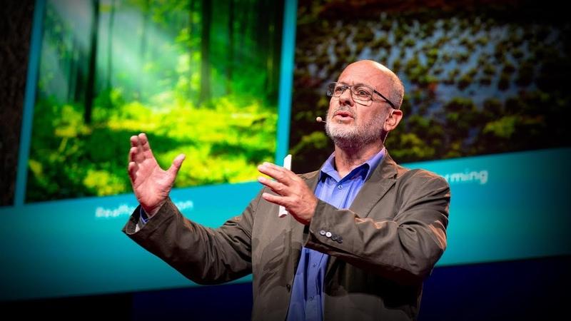 Can seaweed help curb global warming Tim Flannery