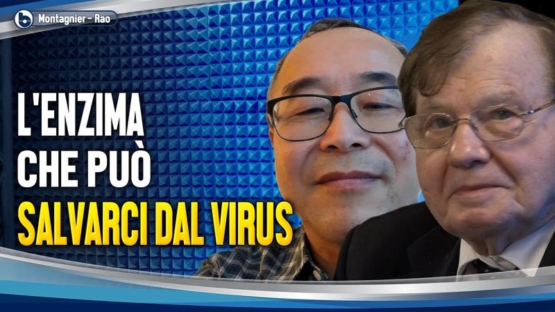 L'ENZIMA CHE PUÒ SALVARCI DAL VIRUS Rao dalla Cina e Luc Montagnier a Byoblu sul coronavirus