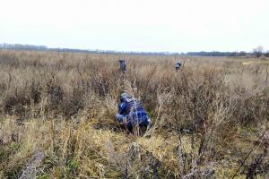 Саперы провели осмотр поля возле Лисичанска