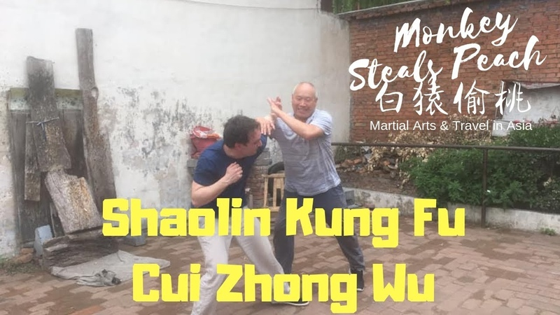 Applications of Shaolin Kung Fu with Cui Zhong Wu Real Shaolin Heritage ep3