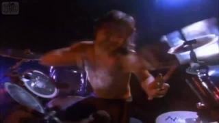 Metallica feat. Винни - пух · #coub, #коуб