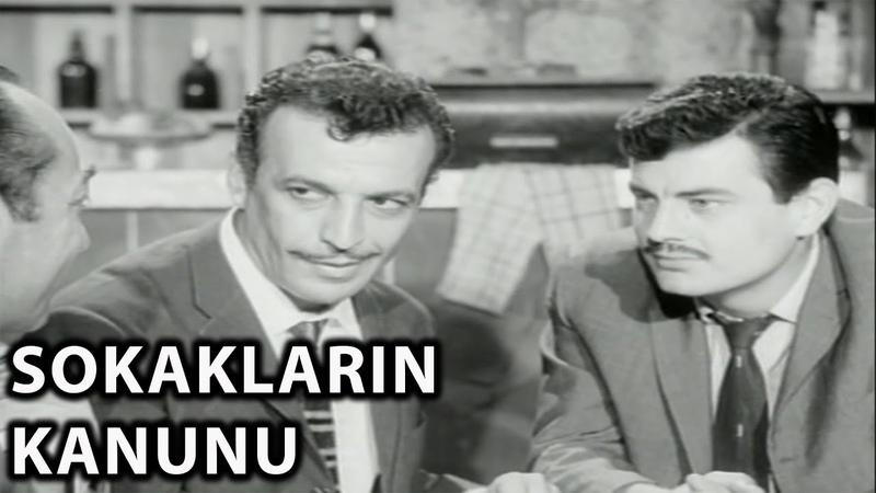 Sokakların Kanunu 1964 Sadri Alışık Ajda Pekkan Tanju Gürsu