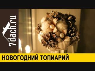 Новогодний топиарий - 7 дач