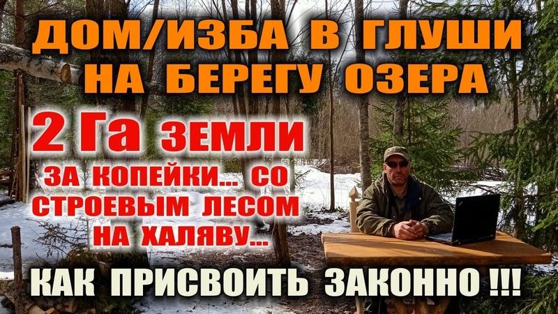 ЗЕМЛЯ ПОД ПРОЖИВАНИЕ В ЛЕСУ Как узаконить свой лес и жить в нем Свой берег озера лес за копейки