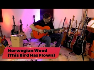 ONE ON ONE: Al Di Meola - Norwegian Wood (This Bird Has Flown) July 18th, 2020