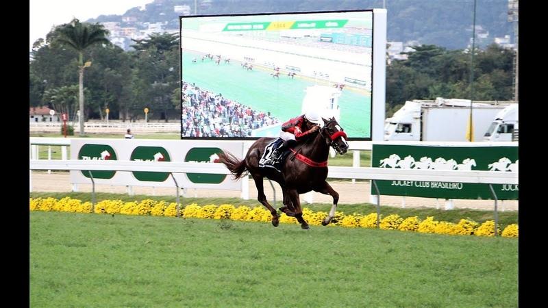 GP Jockey Club Brasileiro (G1) 2019 - Jolie Olímpica (2019 Horse Of The Year)