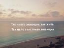 Персональный фотоальбом Натали Снопченко