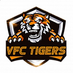 Дикие тигры!, изображение №1
