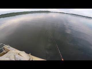 Video by Эхолоты lowrance Самара  +79171100014