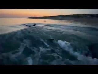 Видео от Юрия Паутова