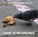 Фотоальбом Алексея Щуплова