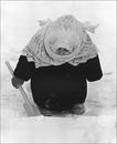 Личный фотоальбом Екатерины Мерц