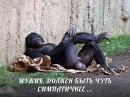 Фотоальбом Андрея Ильича