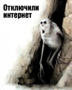 Владимир Тихомиров фотография #39