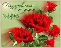 фото из альбома Полины Шиловой №7