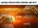 Серебрушкин Александр |  | 37