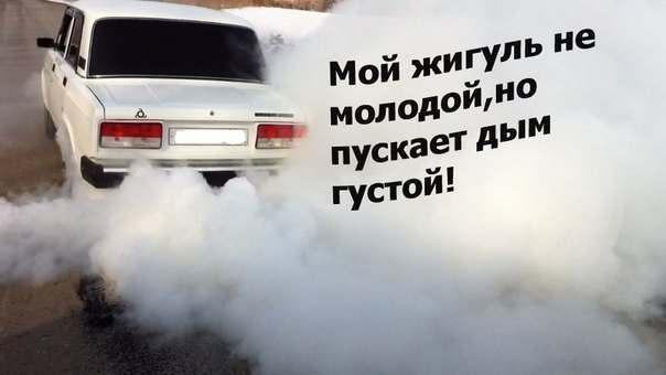 фото из альбома Петра Алексеева №7