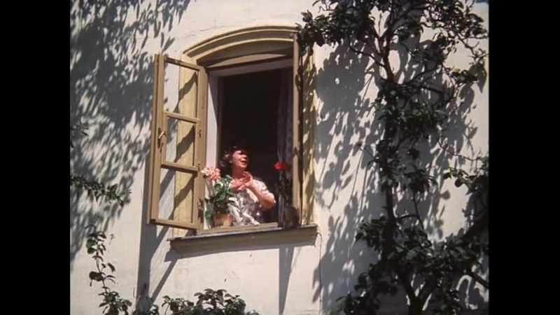 Солнце сено и ягоды 1984