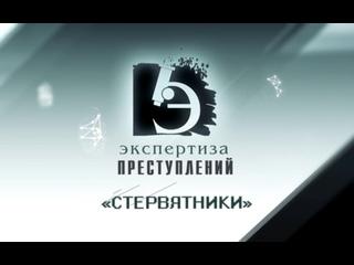 ЧП.BY ЭКСПЕРТИЗА ПРЕСТУПЛЕНИЙ. Стервятники
