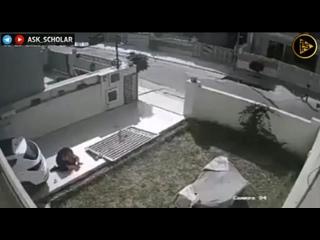 Видео от Динислама Батталова