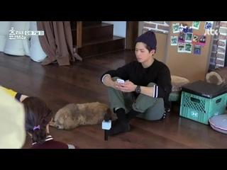 Hyori_s_Bed__Breakfast_2_Episode_10_720p