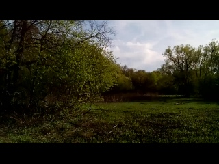 Красивый весенний пейзаж в Теснино  17:28