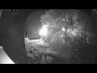 Видео от ЗооЗабота / Курск /