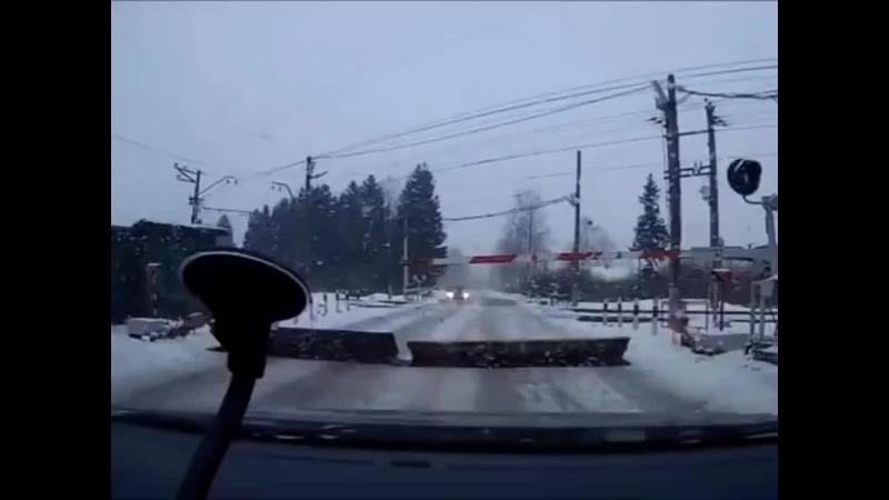 Сумасшедший светофор