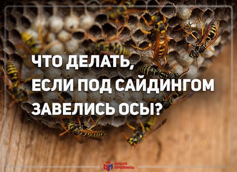 Вывести их – задача опасная, хотя выполнимая.