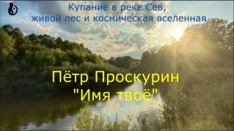 Купание в реке Сев, живой лес и космическая вселенная. Пётр Проскурин. Имя твоё