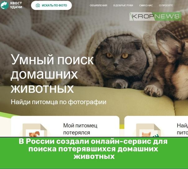 В России создали онлайн-сервис для поиска потерявш...