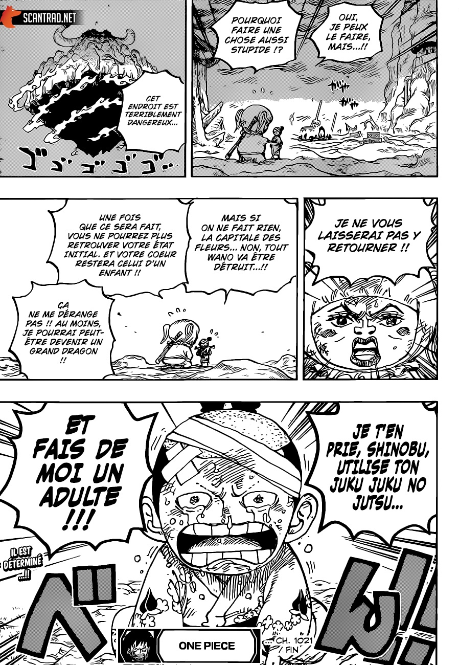 One Piece Scan 1021, image №17