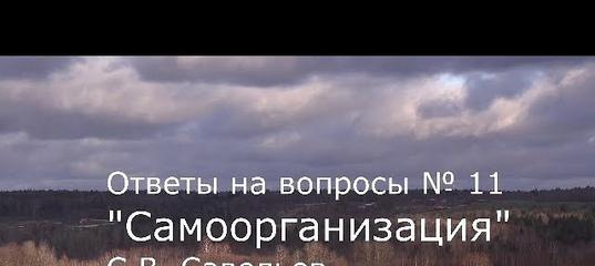 С.В. Савельев - Самоорганизация