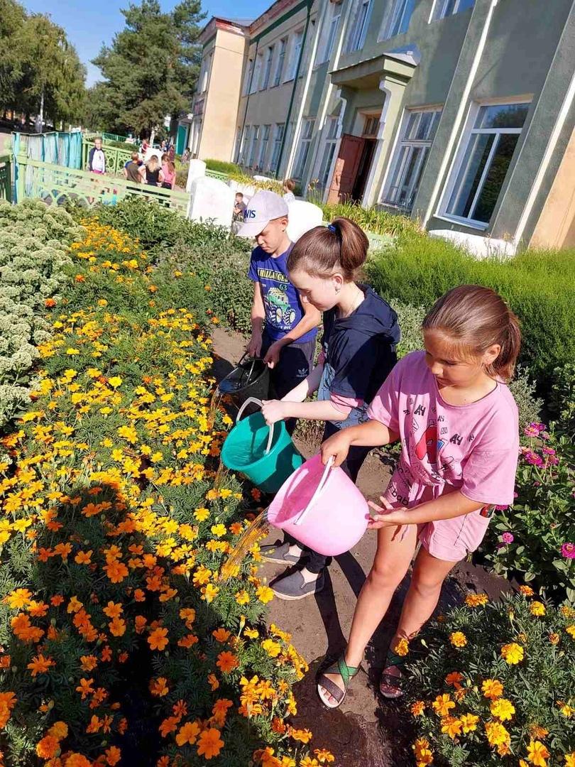 У школьников Петровска продолжается летняя трудовая практика