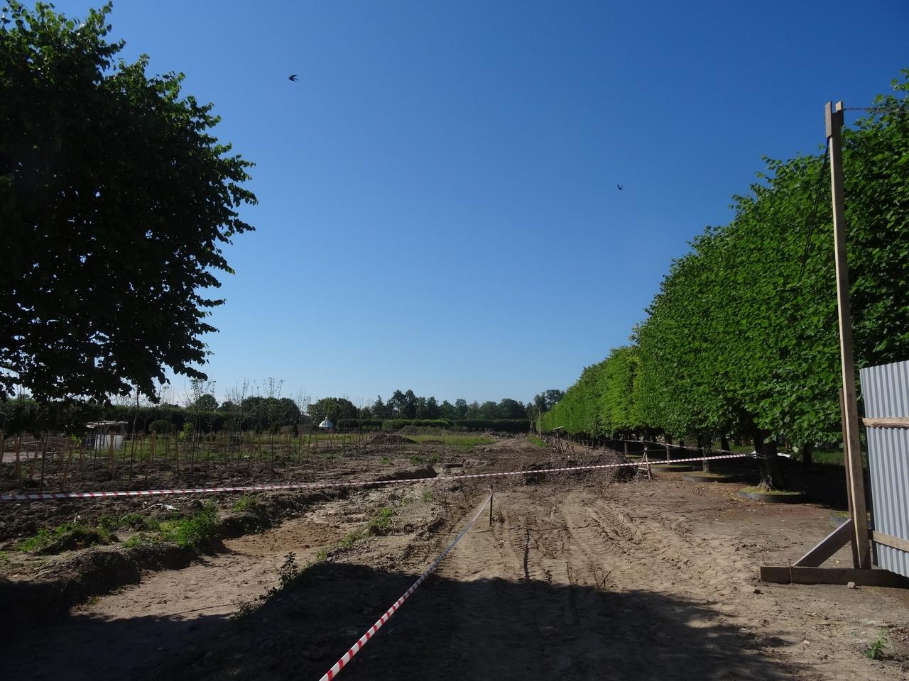 Текущий этап реставрации Верхнего сад