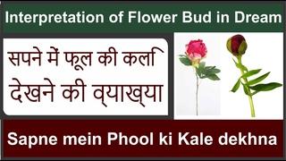 Interpretation of Flower Bud in Dream   Sapne mein Phool Ki Kali Dekhna   सपने में फूल की कलि देखना
