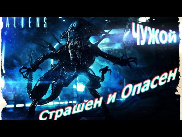 Обзор Питомцев Musicwars 2 Чужой Питомцы Музвар