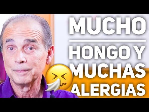 Episodio 2026 Mucho Hongo Y Muchas Alergias