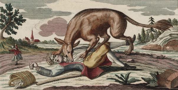 Жеводанский зверь. Провинция Жеводан (сейчас департамент Лозер), 1 июня 1764 19 июня 1767 года. В провинции Жеводан на юге Франции пропало без вести десять человек, когда пожилая крестьянка