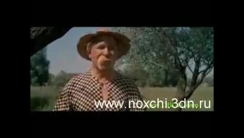 чеченская озвучка фрагмента из фильма Свадьба в малиновке