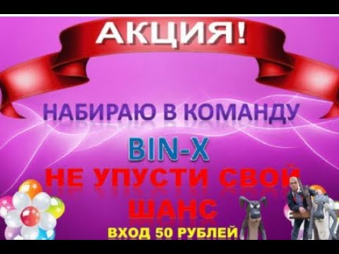 Идеальный Бизнес для всех BIN X BRIZ Вадим Ка и Дмитрий Гид
