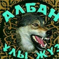 Фотография профиля Алтая Нургожайва ВКонтакте