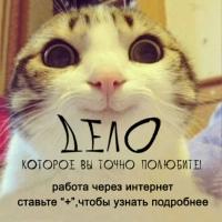 Фотография Катерины Абдулиной ВКонтакте