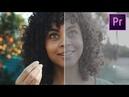 Покрас материала с камеры Canon C200 с C Log в Adobe Premiere FREE LUT