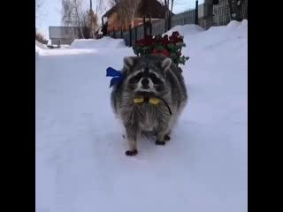 Парень с огромным букетов цветов приходит к родителям своей любимой. <br />— Что тебе, Вася? - спрашивает отец девушки. <br />