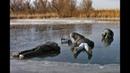 Рыбаки приколы на рыбалке зимой/Зимняя рыбалка приколы